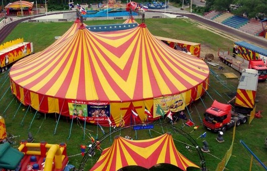 Картинки по запросу цирк